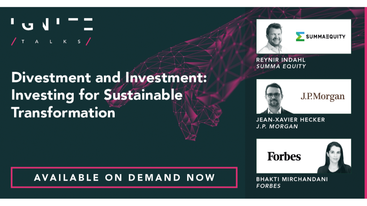 Divestment and Investment: Investing for Sustainable Transformation
