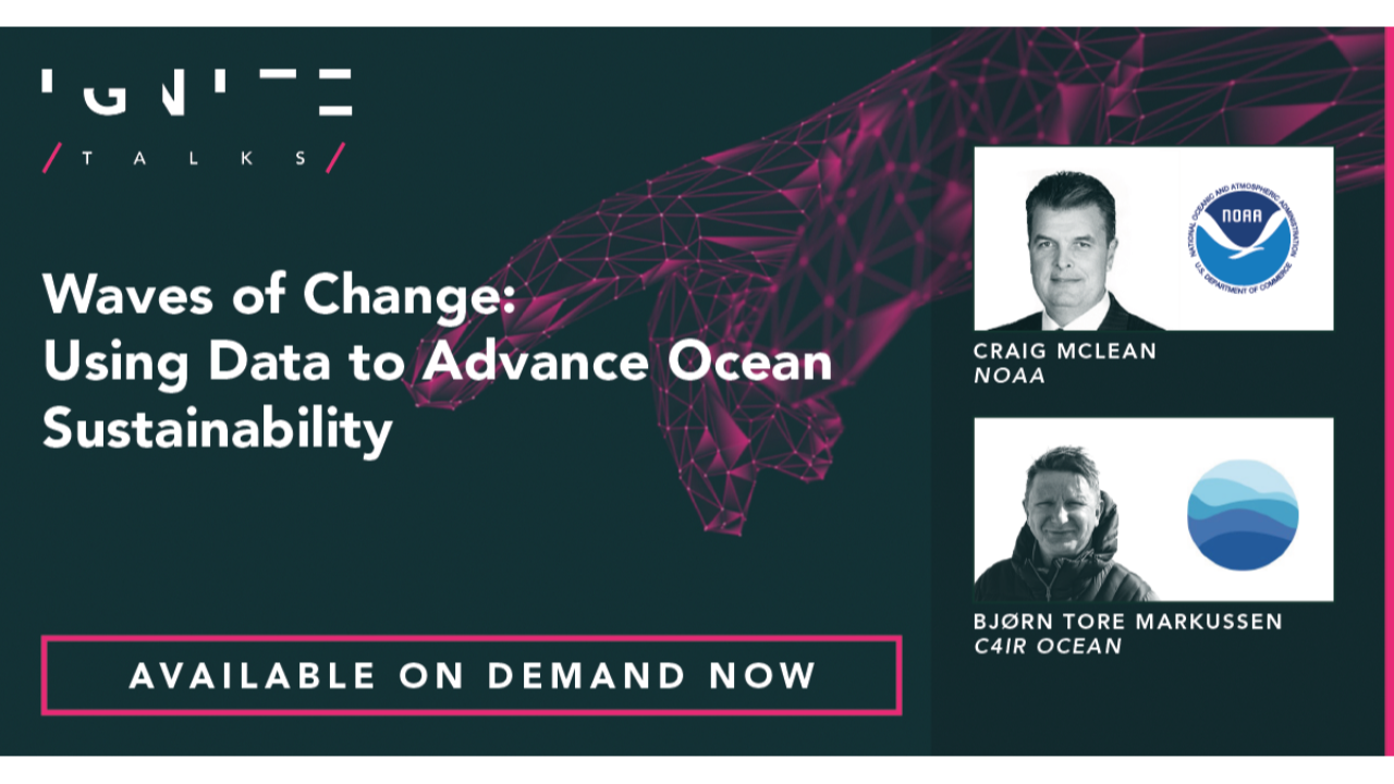 Waves of Change: Using Data to Advance Ocean Sustainability